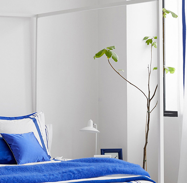 White & Blue – Casa Rural Sabariz